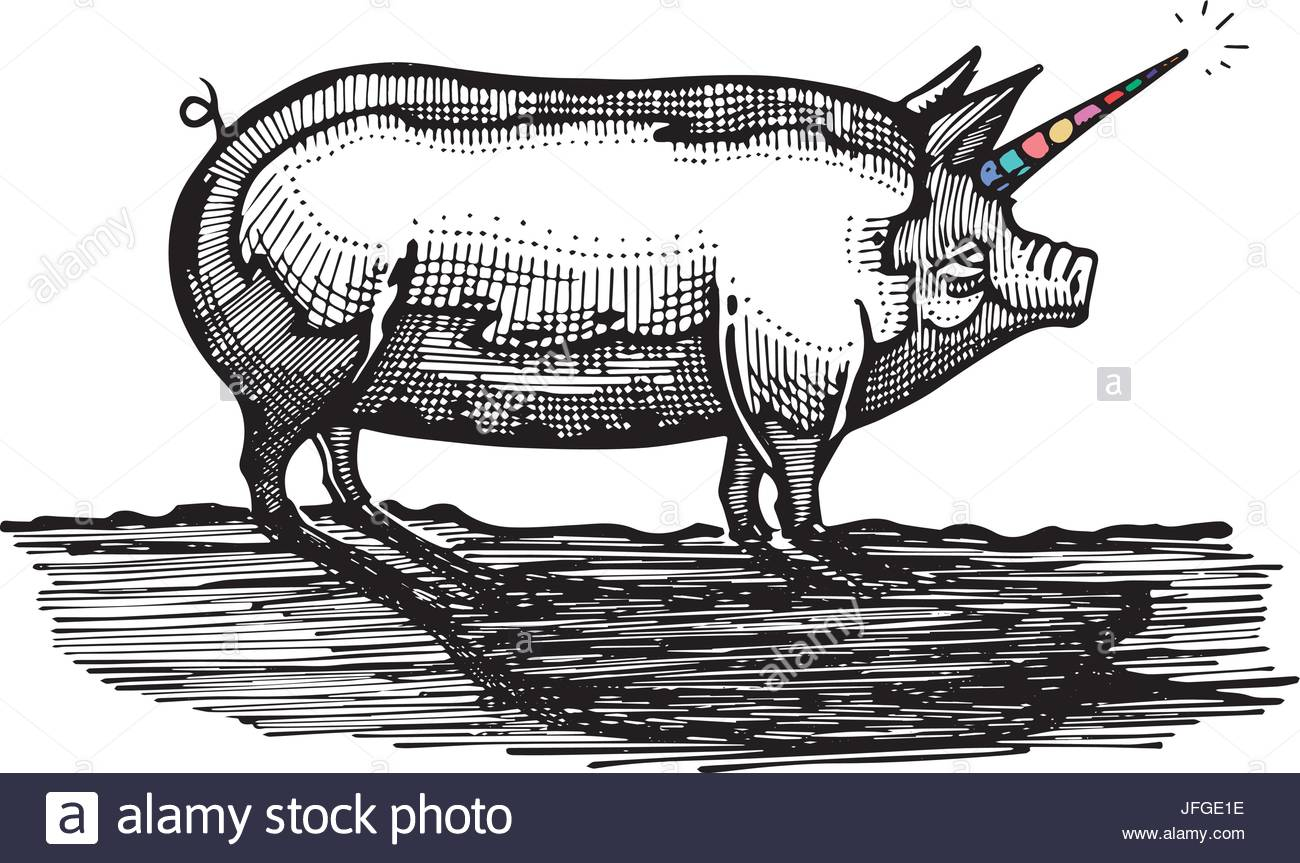 1300x863 Hand Drawn Vector Illustration Or Drawing Of A Pig With Unicorn