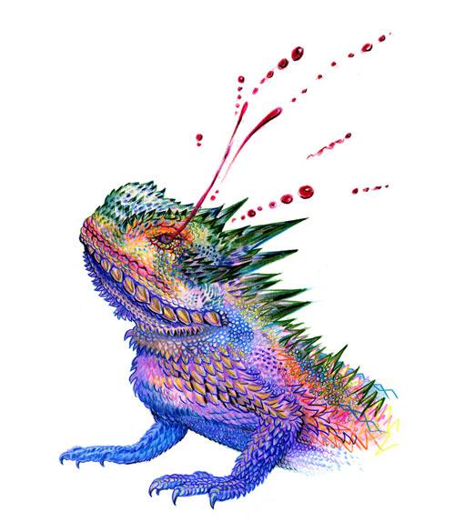 500x585 The Texas Horned Lizard