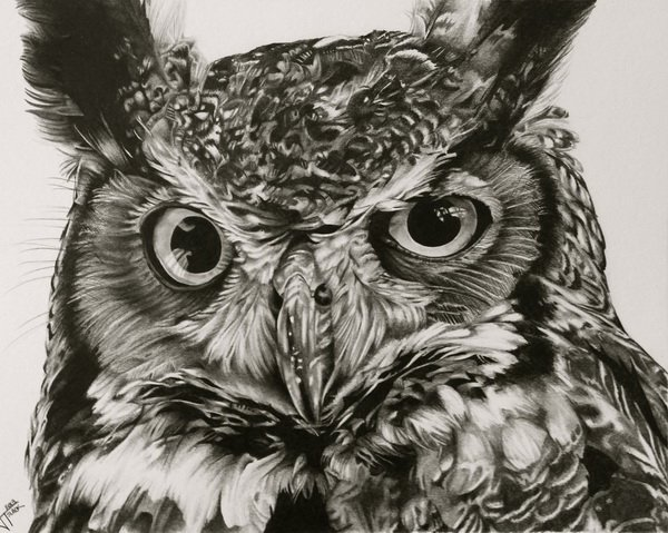 600x479 Clever Owl Drawings For Inspiration Owl Drawings, Owl And Draw
