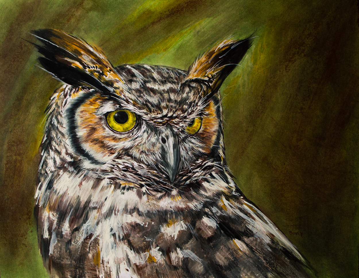 1250x969 Great Horned Owl By Dfbovey