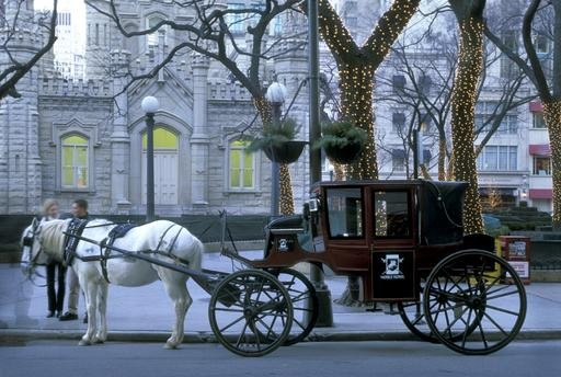 512x344 City Of Chicago Horse Drawn Carriages