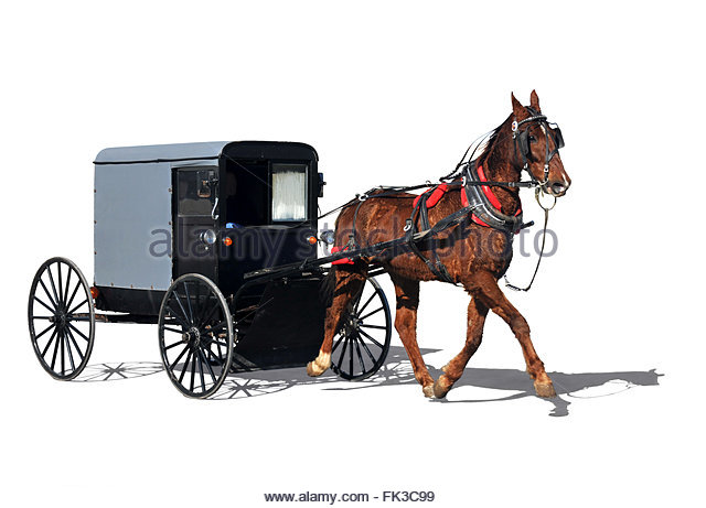 640x461 Horse Drawn Cut Out Stock Images Amp Pictures