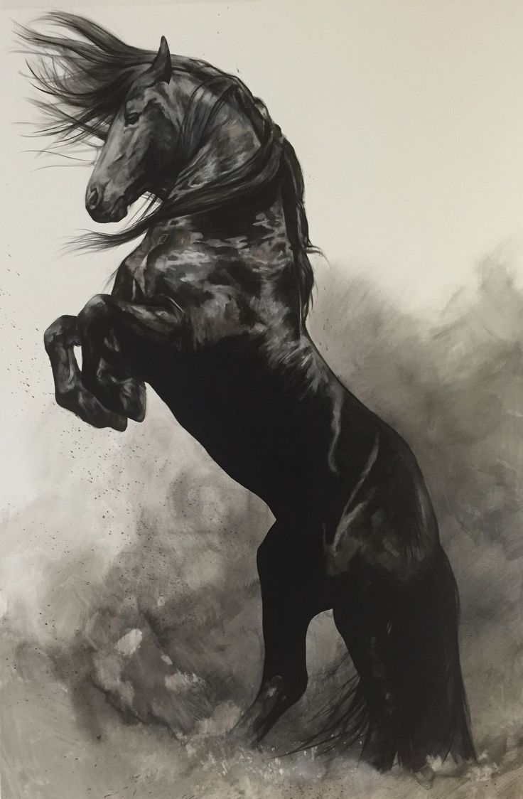 736x1124 761 best horse art images on pinterest horse equine art and