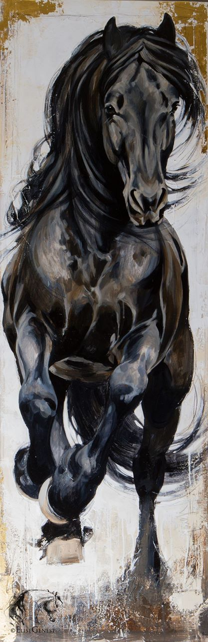 417x1282 D4f62acf2512a12945745ad6ef0a01ae.jpg Horses
