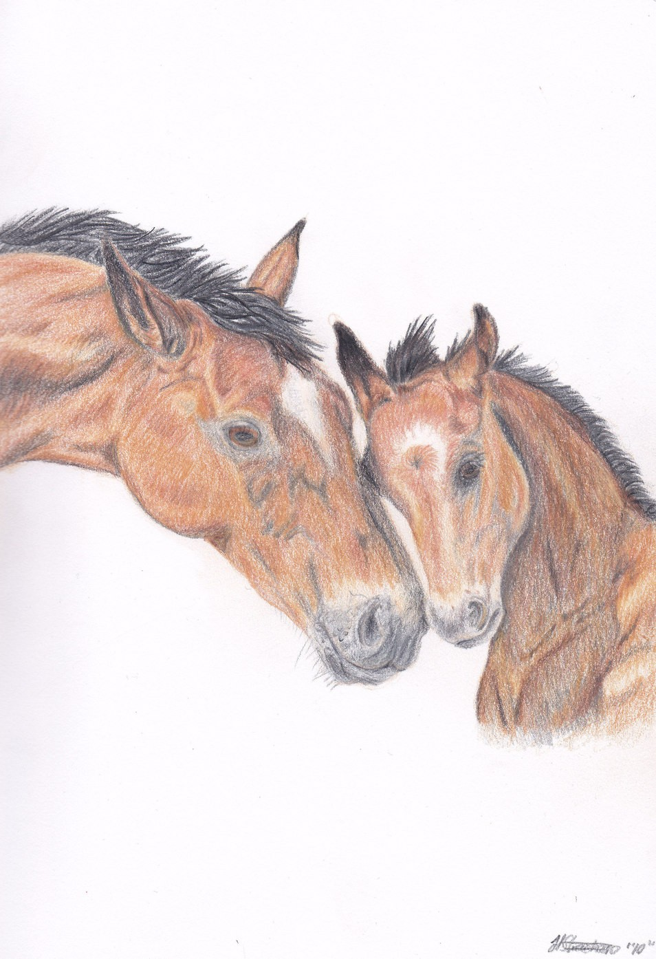 954x1394 Affectionate Mare And Foal By Hopelesslife