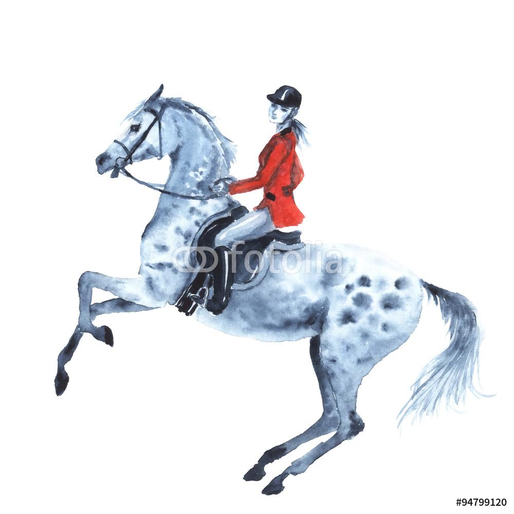 1000x1000 Watercolor Rider And Dapple Grey Horse Horseman Girl On Rearing Up