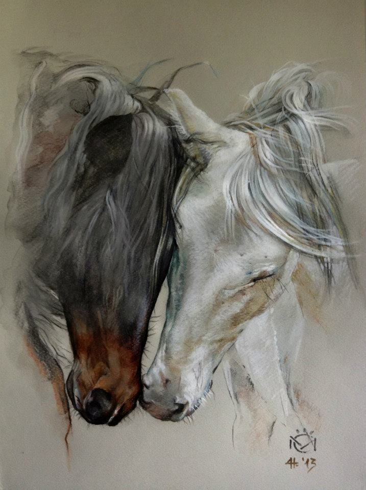 717x960 Daniela Nikolova Sidiropoulou Horse Art Indio Xlii Amp Entendido