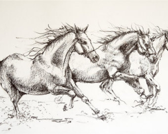 340x270 Horse Drawing Etsy