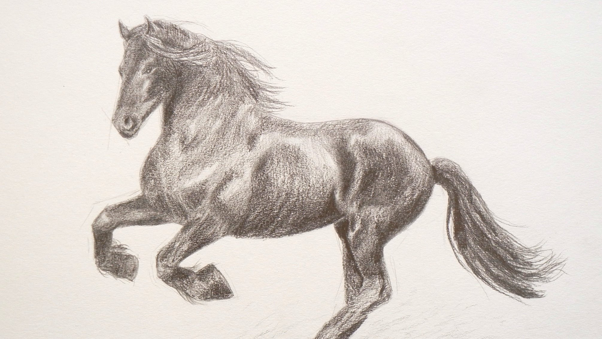2011x1134 Learning To Draw How To Draw A Horse
