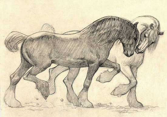 550x386 Michele Graybeal Horse Artist Interview The Equinest