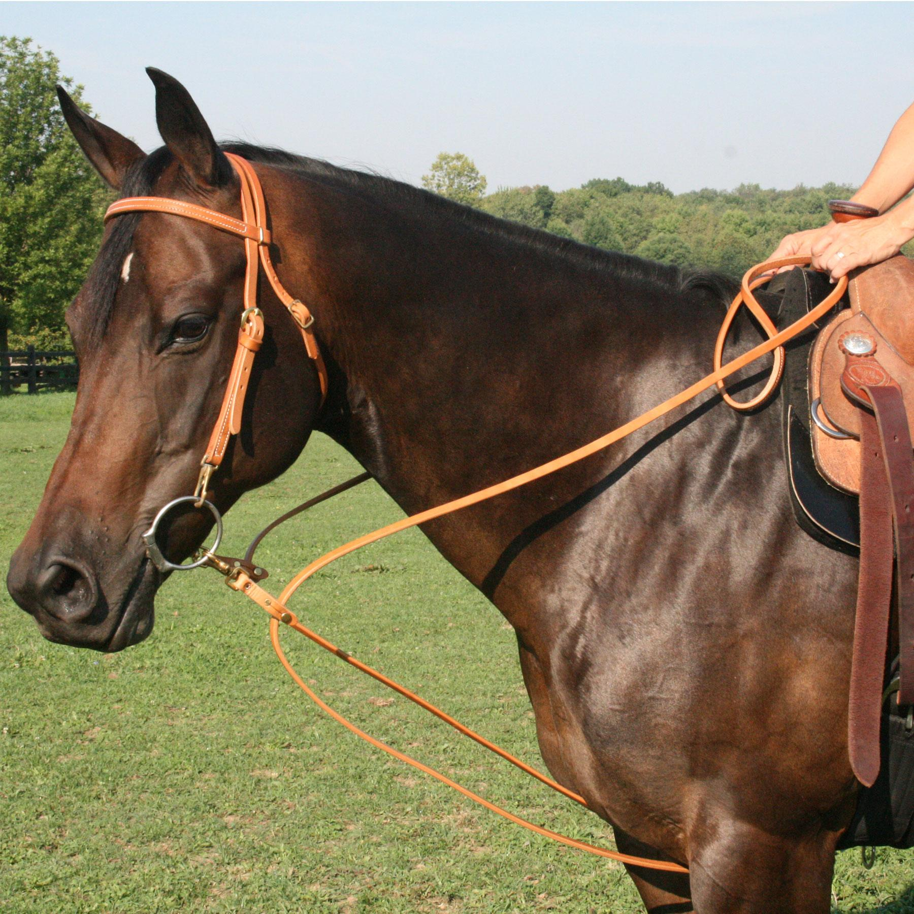 1800x1800 Billy Harness Leather Pulley Draw Reins In Billy Royal