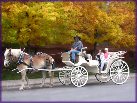 451x338 Aspen Carriage And Sleigh The Rocky Mountain's Premier Horse Drawn