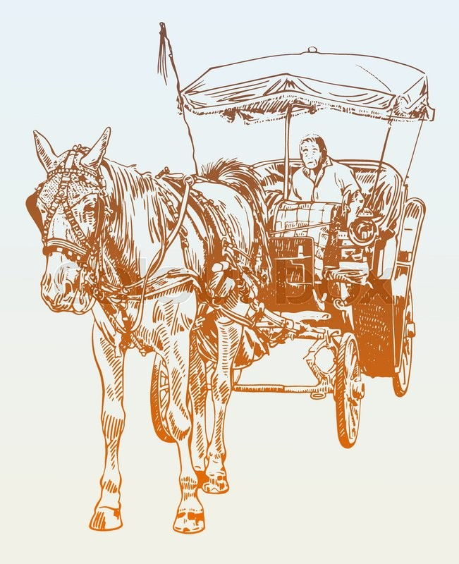 651x800 Sketch Drawing Of Horse Driver, Vector Illustration Stock Vector