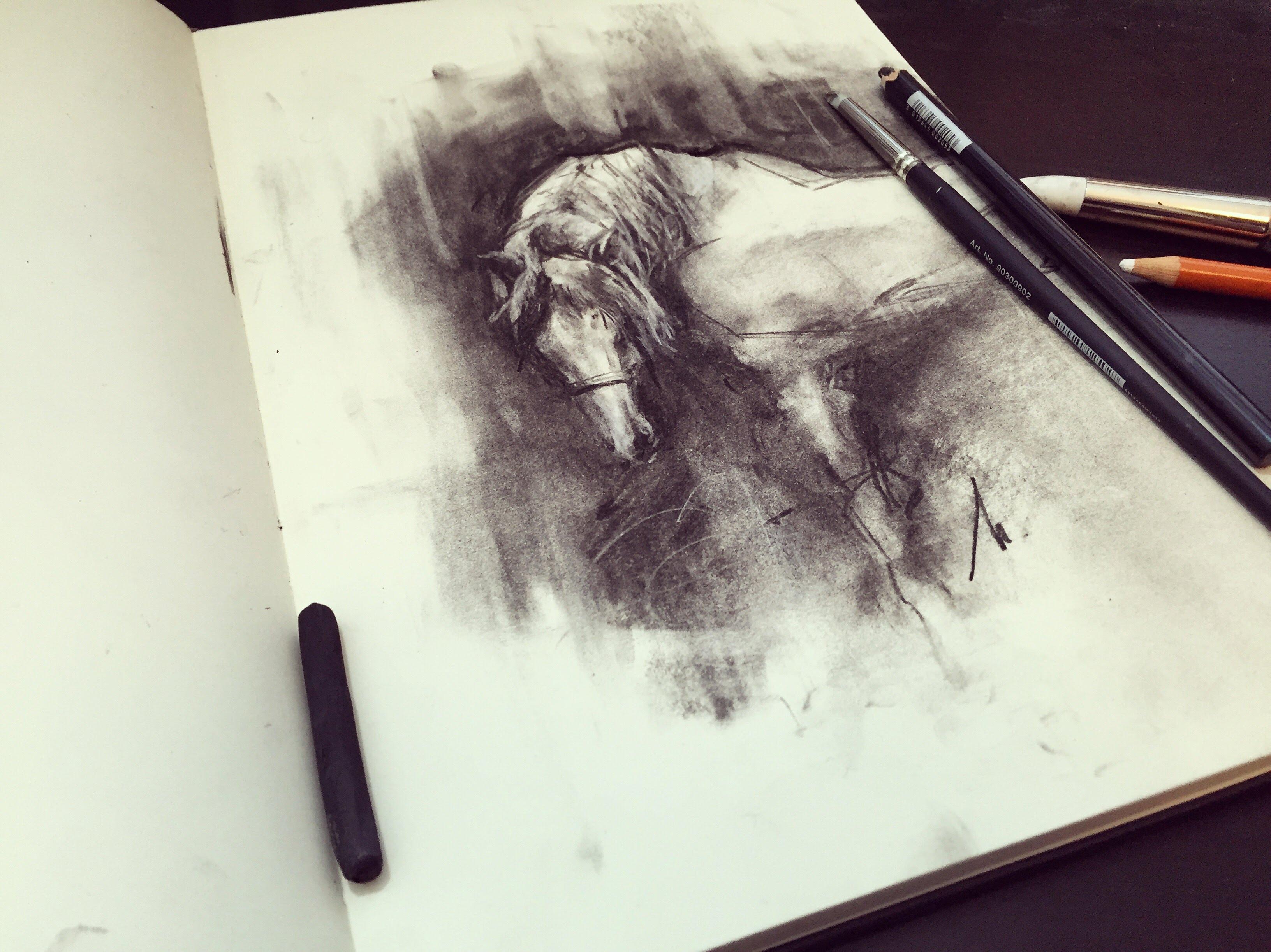 3264x2447 Charcoal Horse Demo