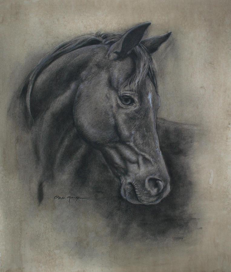 763x900 Horse Drawing Ii Drawing By Omar Garza