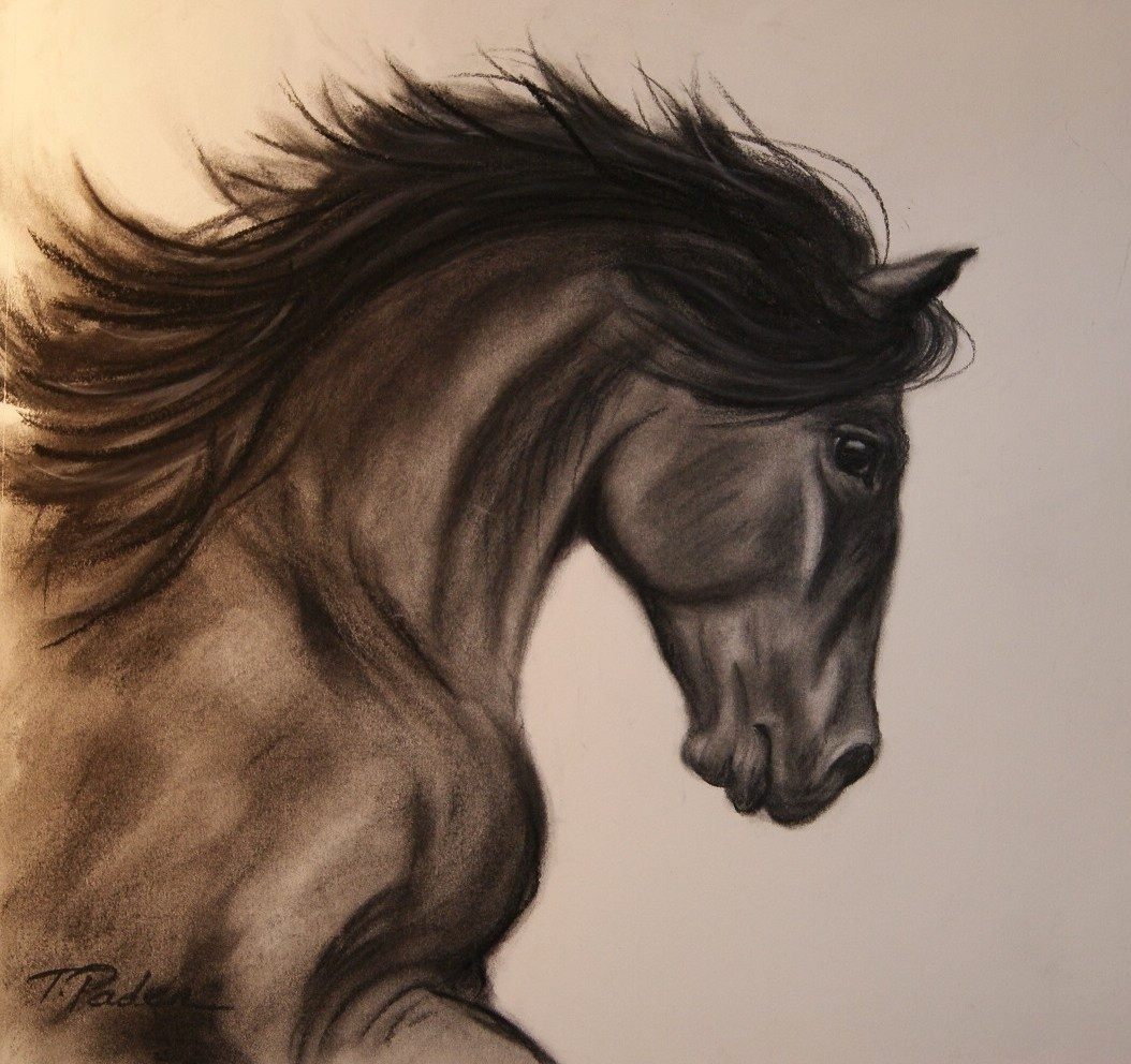 1054x992 Paintings By Theresa Paden Just Having Fun, Charcoal Horse