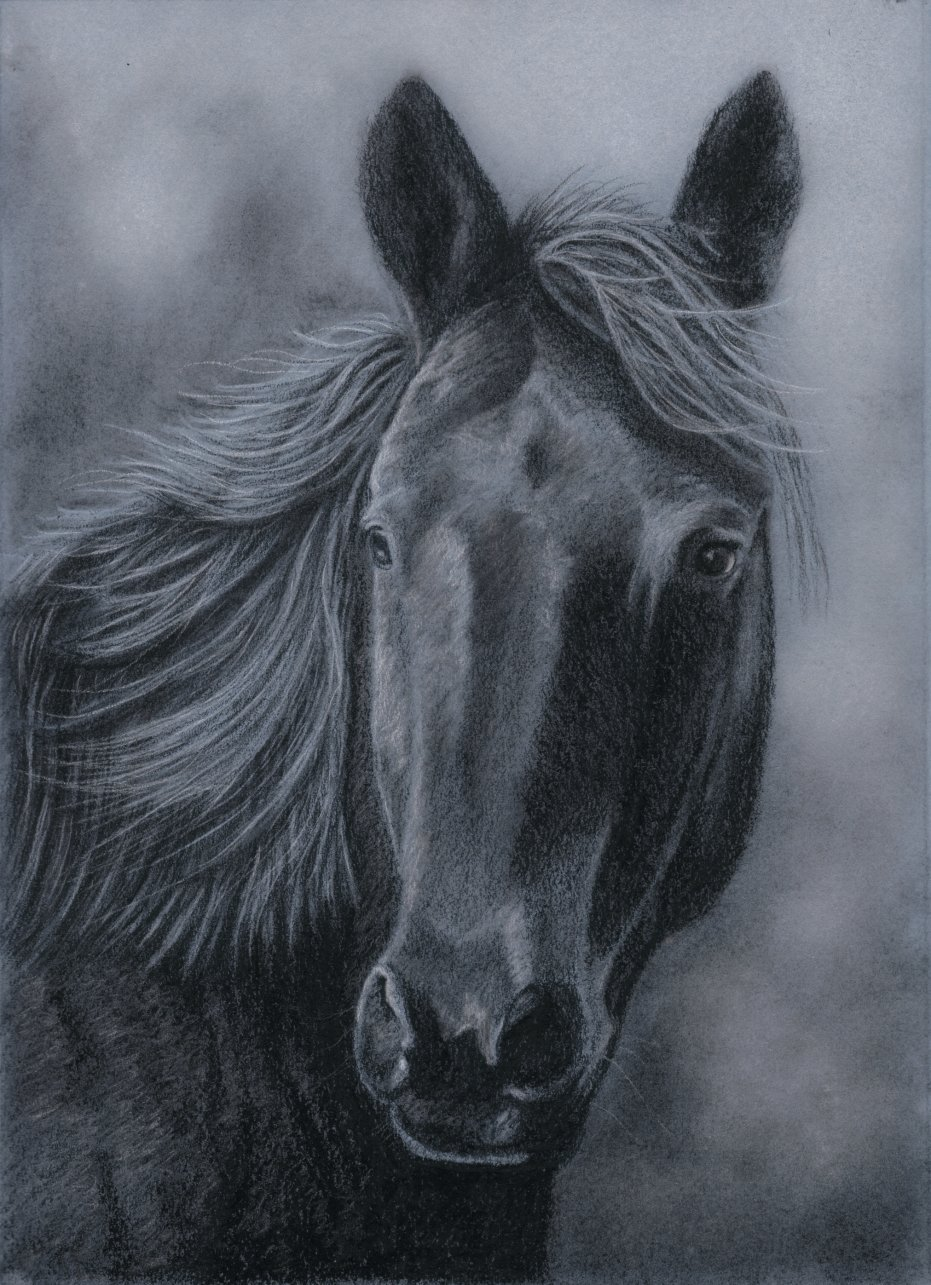 931x1285 In Charcoal By Rasberry6