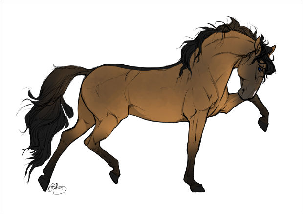 620x438 19+ Beautiful Horse Drawings, Art Ideas Design Trends