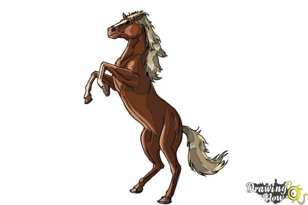 600x400 How to Draw a Horse Body