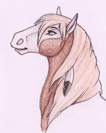 355x446 Pin by Lara on s Pinterest Draw, Horse drawing tutorial and