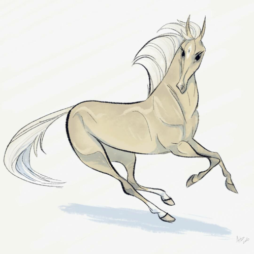 500x500 daily horse drawings Tumblr