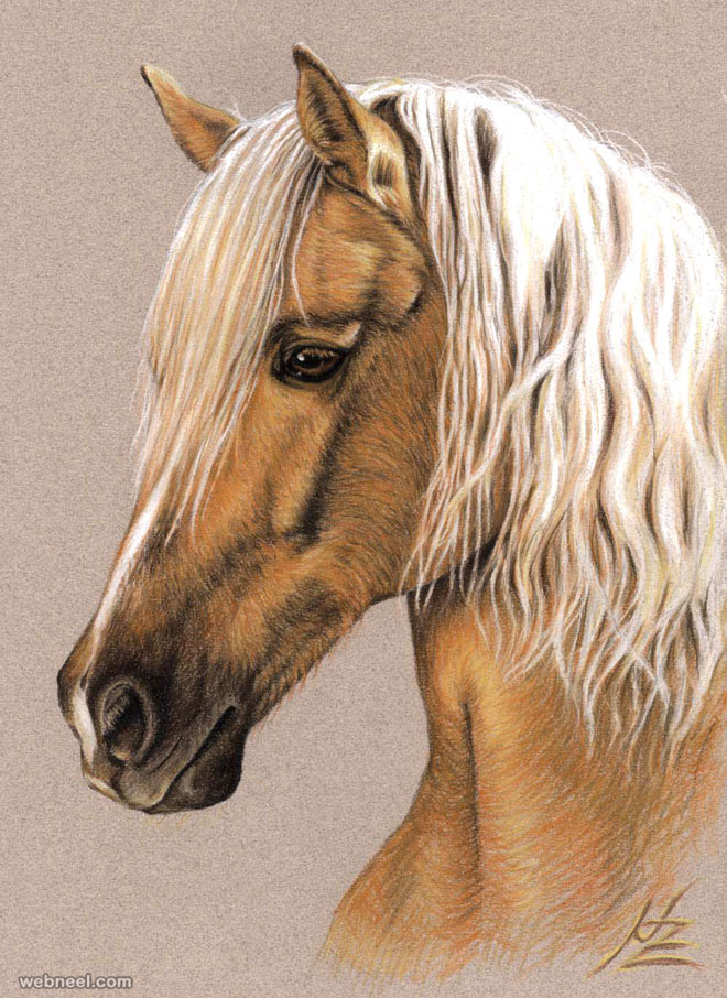 660x906 horse drawing animal nicolezeug 16
