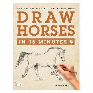 300x300 Horse Drawing Learn How To Draw Horses Diana Hand Equestrian Art