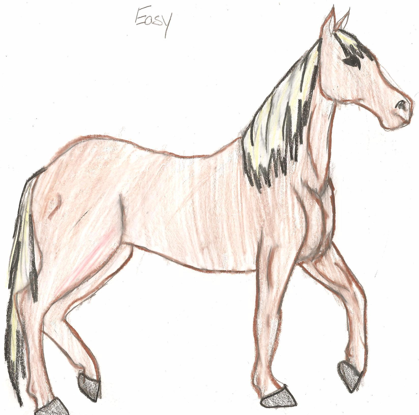 1648x1632 Easy The Horse By Cooki Monster