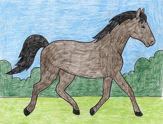 650x495 Horse