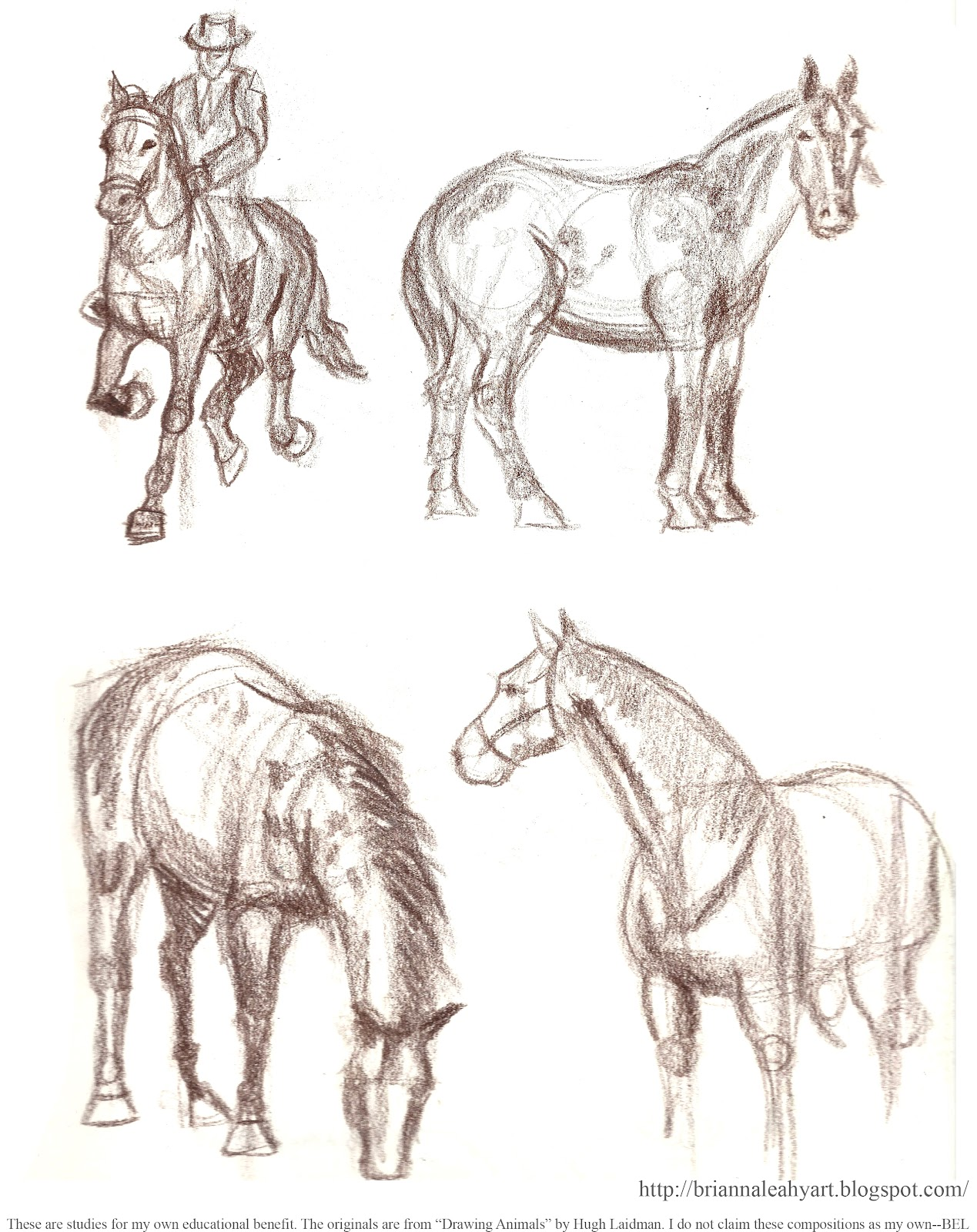 1269x1600 Art By Bri E. Leahy My Sketchbook Pages Horse Studies