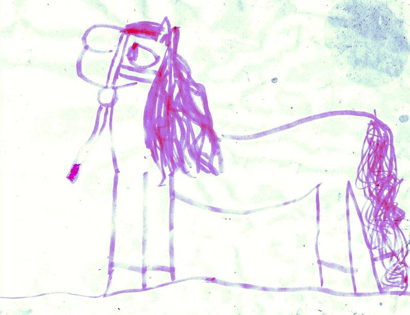 800x614 Gypsy Horse, Gypsy Vanner Horses, Irish Cobs, Now Available