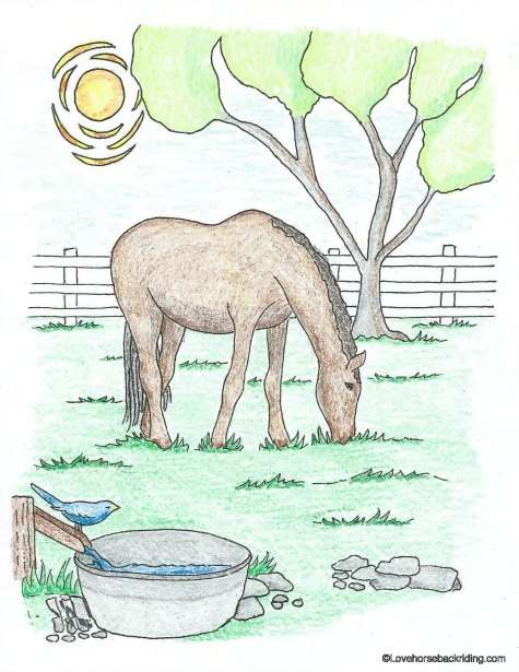 475x615 Printable Horse Coloring Pages For You To Enjoy