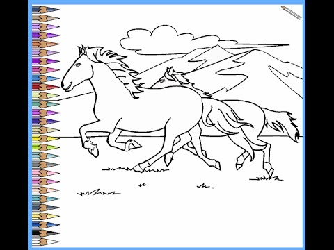 480x360 Wild Horse Coloring Pages For Kids