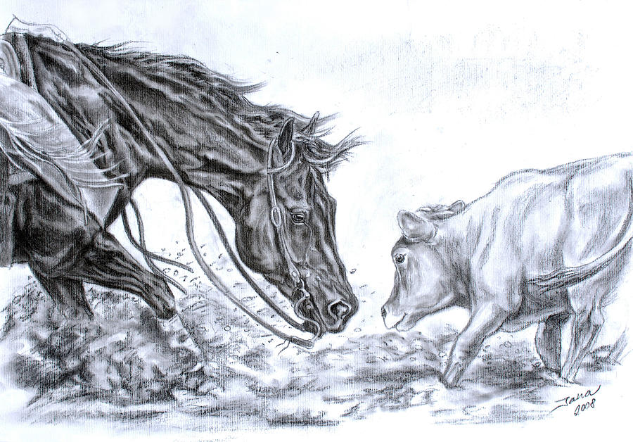 900x628 Horse Drawings Fine Art America