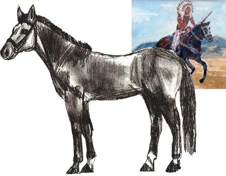 450x350 How To Draw A Horse