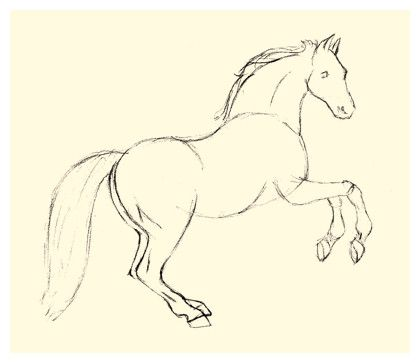 420x363 Horse Drawing