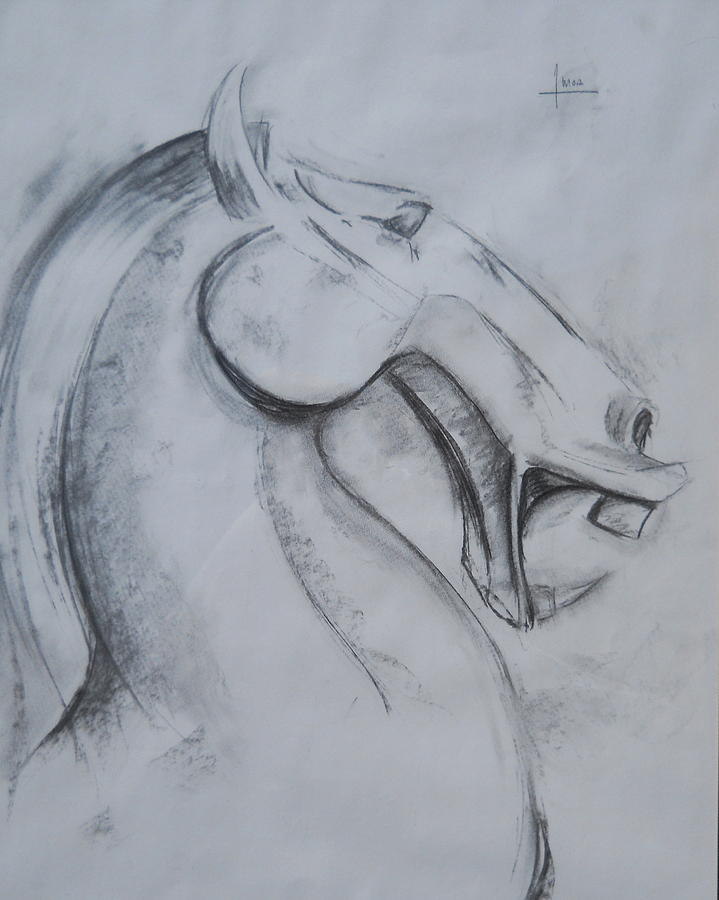 719x900 Horse Face Drawing By Victor Amor