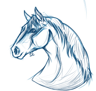 320x303 Horse Drawings On Paigeeworld. Pictures Of Horse