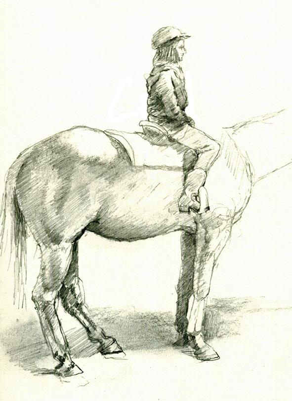 591x813 Drawing Horses Mark Koslow