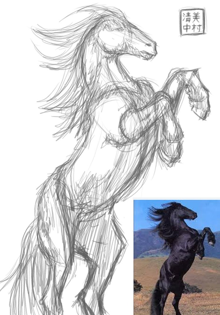 748x1069 Figure Drawing With Reference (Horse) By Kiyomi Nakamura