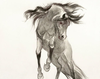 340x270 Horse Horse Drawing Horse Print Horse Pencil Drawing