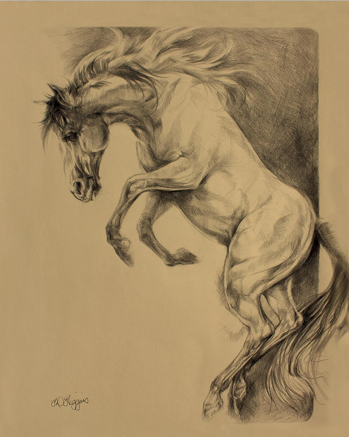 720x900 Mustang Rearing Drawing By Derrick Higgins
