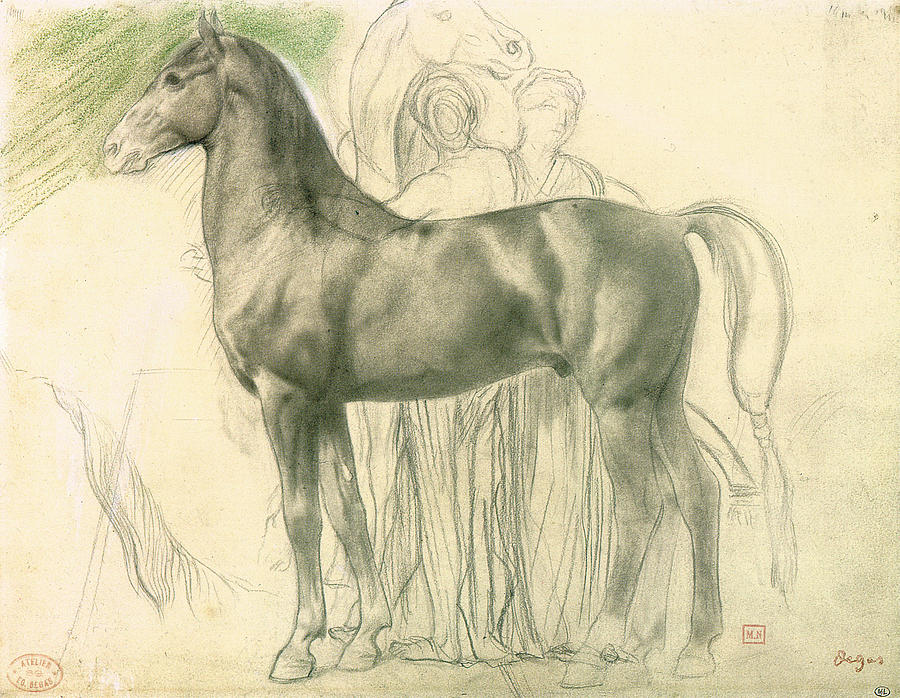 900x698 Study Of A Horse With Figures Drawing By Edgar Degas