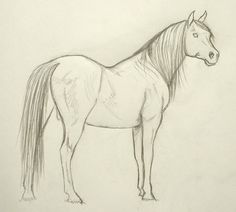 236x212 Comic Book Video Tutorials How To Draw A Horse Galloping Great