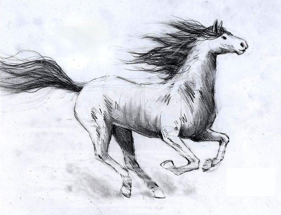 900x688 Galloping Horse By Rosemermaid10