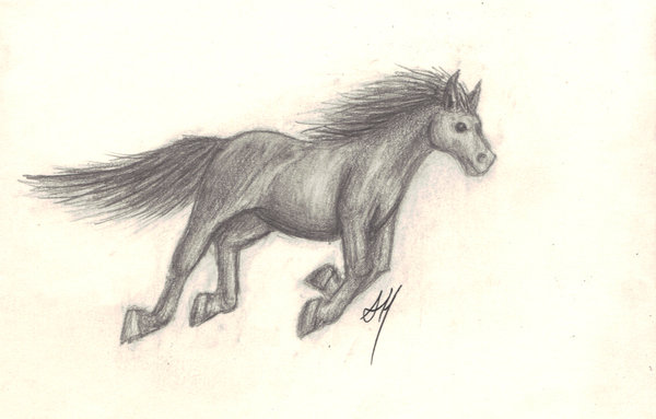 600x383 Galloping Horse By Wyvernflames