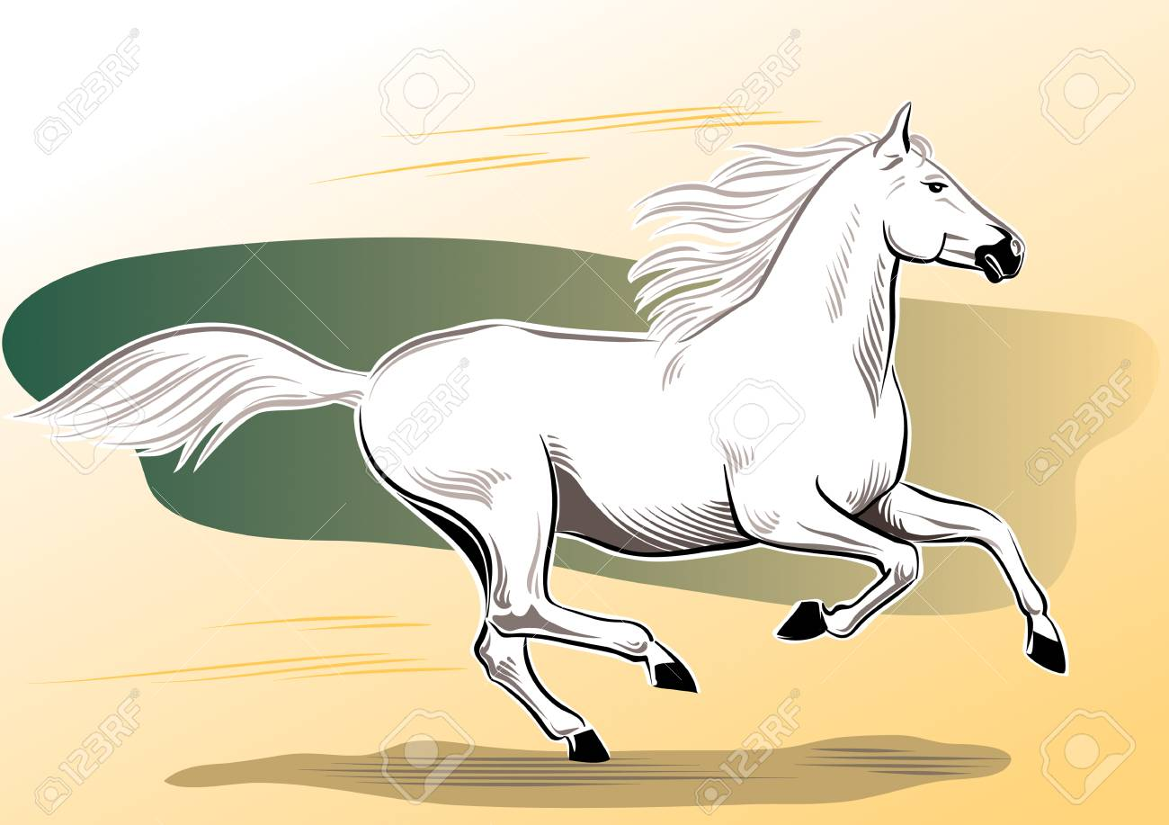 1300x917 White Horse Galloping Free In The Wind. Royalty Free Cliparts
