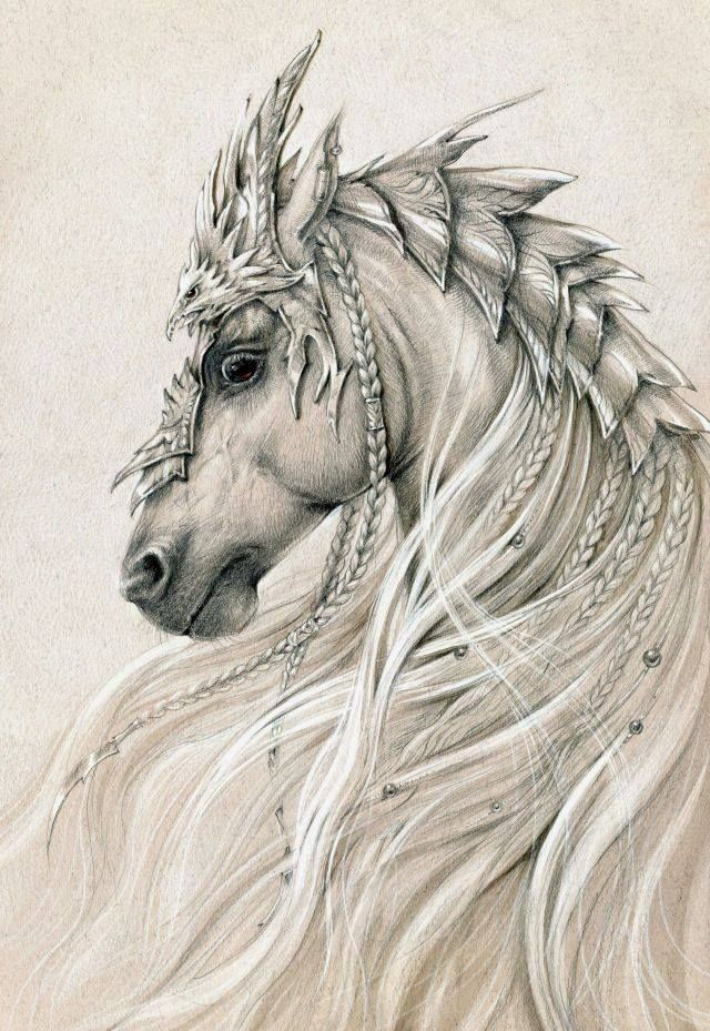 640x929 Horse, Drawings And Tattoo