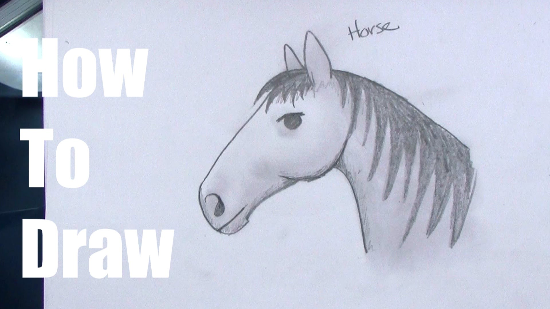 1920x1080 How To Draw A Horse For Kids Step By Step