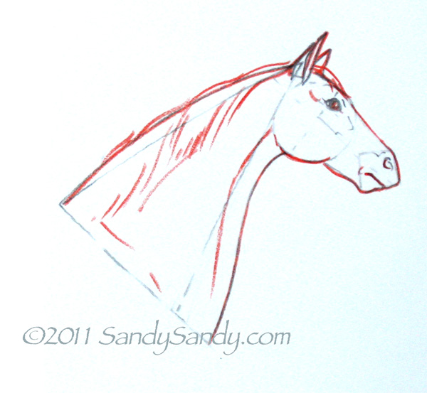 600x553 How To Sketch A Horse Step By Step